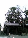 20060223_imadegawa