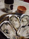 20060301_oyster