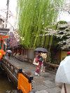 20060410_shirakawa002_1