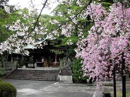 20060413_okazaki