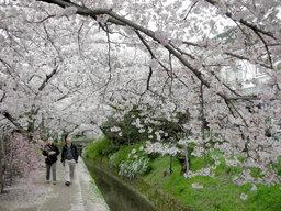 20060413_tetsugaku001