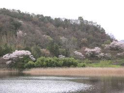 20060416_ikejiri