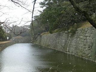 Image696_2