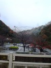 blog_photo1206_snow002