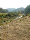 20051122_aigawa01