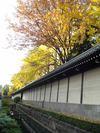 20051128_nishihonganji01
