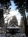 20060123_ohara002