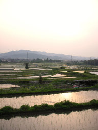 20060601_kameoka02