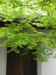 20060608_houkongoin007